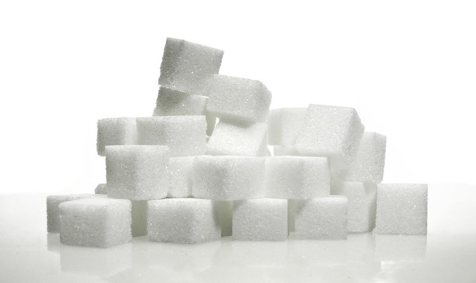sucres alimentation